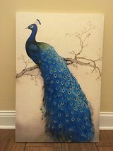 Peacock Wall Art Frame in Fort Bragg, North Carolina