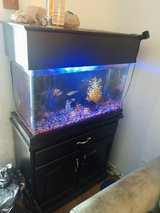 29 high fish tank set up in Cherry Point, North Carolina