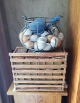 Egg carton with metal basket and ceramic eggs in Fort Riley, Kansas