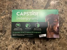 Capstar (for Dogs 25 lbs+) in Beaufort, South Carolina