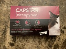 Capstar (for cats) in Beaufort, South Carolina