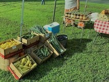 Poquoson Farmers Market in Hampton, Virginia
