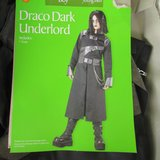 "TEEN Costume Goth Look - ""Draco Dark Underlord"" or Get Creative in Naperville, Illinois"