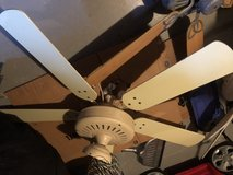 Large 5 blade  tan fan in Oswego, Illinois