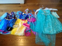 Princess dress-up costumes in Batavia, Illinois