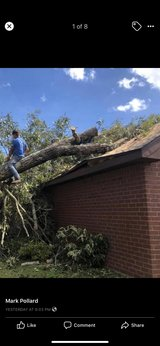 tree removal, debris clean up, land clearing in Fort Polk, Louisiana