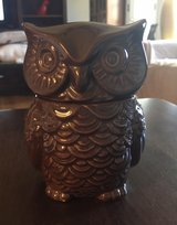 Small Owl Container in St. Charles, Illinois
