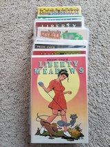 24 Liberty Meadows Comic Lot in Camp Lejeune, North Carolina