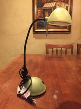 Bendable Lamp in Kingwood, Texas