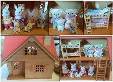Calico Critter Families and Accesories in Naperville, Illinois