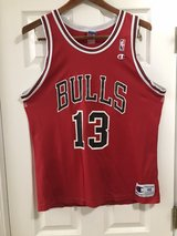 Luc Longley Bulls vintage jersey in Oswego, Illinois
