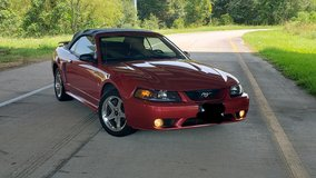 2001 SVT Mustang Convertible in Houston, Texas