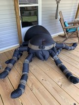 blow up spider in Cleveland, Texas