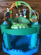 Jungle ExerSaucer in Okinawa, Japan