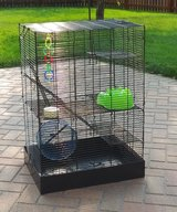Cage for ferrets in Naperville, Illinois