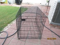 Portable metal dog kennel in Alamogordo, New Mexico