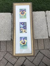 Framed picture in Oswego, Illinois