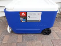 wheeled cooler in Chicago, Illinois