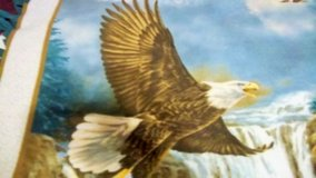 """Eagle wall hanging 36"""" x 47""""  in two pieces in Alamogordo, New Mexico"""