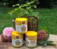 HONEY - delicious, local, organic in Ramstein, Germany
