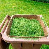 Donate Your Grass Clippings in Okinawa, Japan