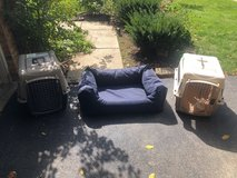 cat boxes and dog bed in Chicago, Illinois