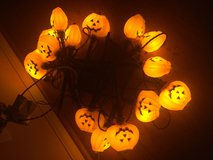 Lighted pumpkins with stakes (2 strands) in Naperville, Illinois