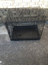 Fold down dog kennels in Clarksville, Tennessee