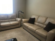 Leather Sofa and Loveseat in Algonquin, Illinois