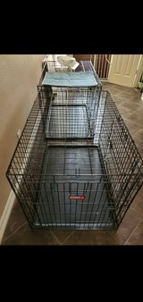 TWO XL DOG CRATES in Spring, Texas