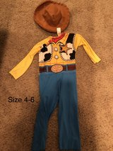 Toy Story Woody Costume in Joliet, Illinois