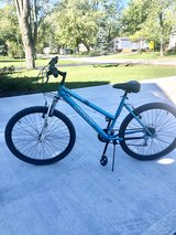 Women's bike in Naperville, Illinois