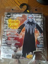 Halloween Glowing Reaper Costume in Plainfield, Illinois