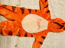 Halloween-Tigger costume in Beaufort, South Carolina