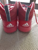 Basketball gym shoes in Bolingbrook, Illinois
