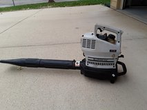 Leaf Blower in Wheaton, Illinois