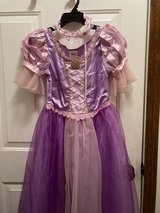 Rapunzel Costume, shoes, wig and crown in Chicago, Illinois