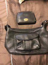 Fossil purse in Conroe, Texas
