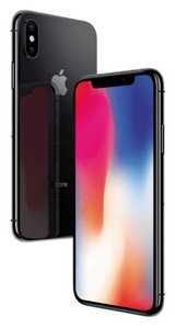 IPhone X - 256GB spacegrey in Grafenwoehr, GE
