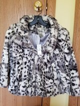 Coat for Woman or Young Girl in Chicago, Illinois