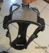 Padded Dog Harness in Alamogordo, New Mexico