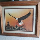 Bald Eagle Paintings matted and framed in oak in Camp Lejeune, North Carolina