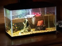 10 gal fish tank in Batavia, Illinois