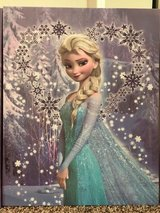 Disney Frozen Elsa Canvas Print in Naperville, Illinois