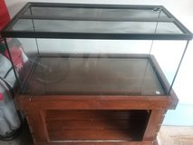 40 gallon tank with handmade stand in Batavia, Illinois