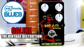 HEAD ROOM Vintage Distortion by Caline- Humongous--Multi Voiced--Read Reviews! in Alamogordo, New Mexico