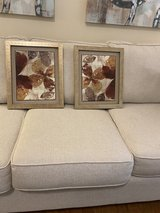 Two Picture's with leaves of gold & rust with brassy gold frame. in Wilmington, North Carolina