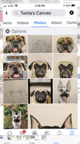 Need a pet portrait as a Christmas gift? in DeRidder, Louisiana