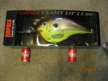 RAPALA GIANT DT DISPLAY LURE in Hampton, Virginia