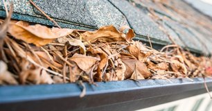 Need your gutters cleared? Leaf clean-up and debris removal, FREE estimates in Spring, Texas